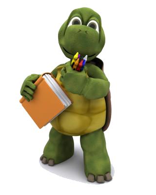 tartaruga_s